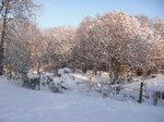 Winter on Remenham Hill