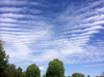 Mackerel skies over Remenham - D Poulos