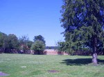 Parish Hall picture with trees and grass